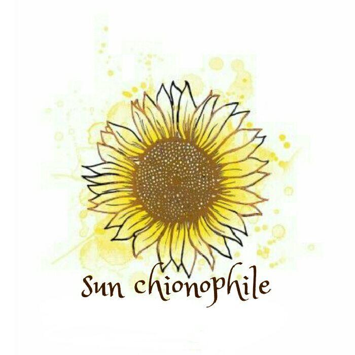 sun chionophile